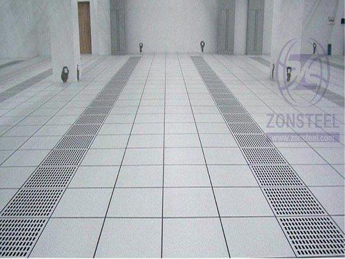 Elevated Floor 4