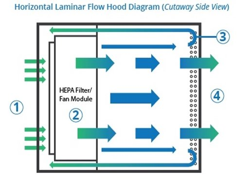 How a Horizontal Flow Hood Works